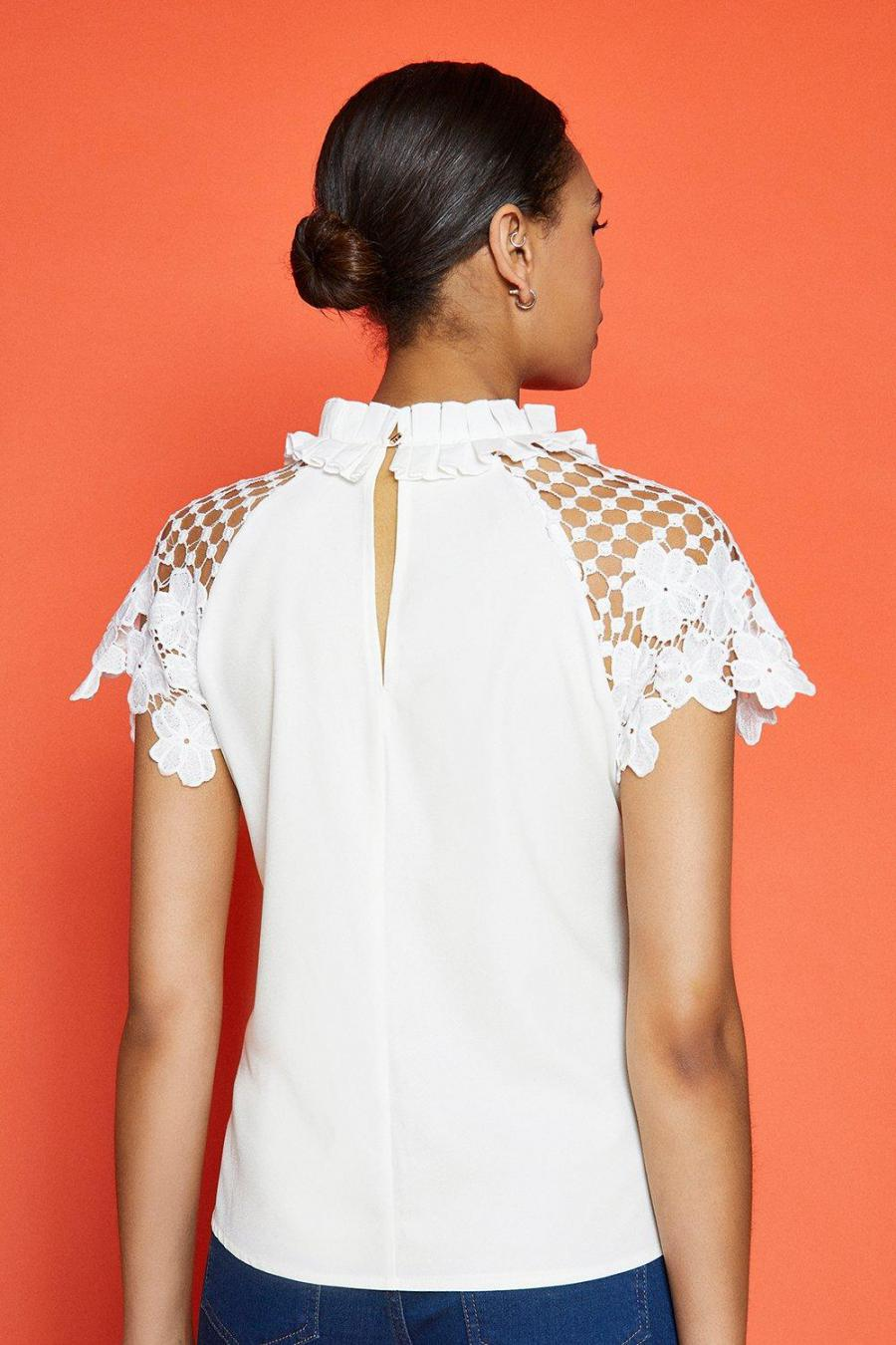 Coast Shell Tops | Womens Lace Sleeved Shell Top Ivory