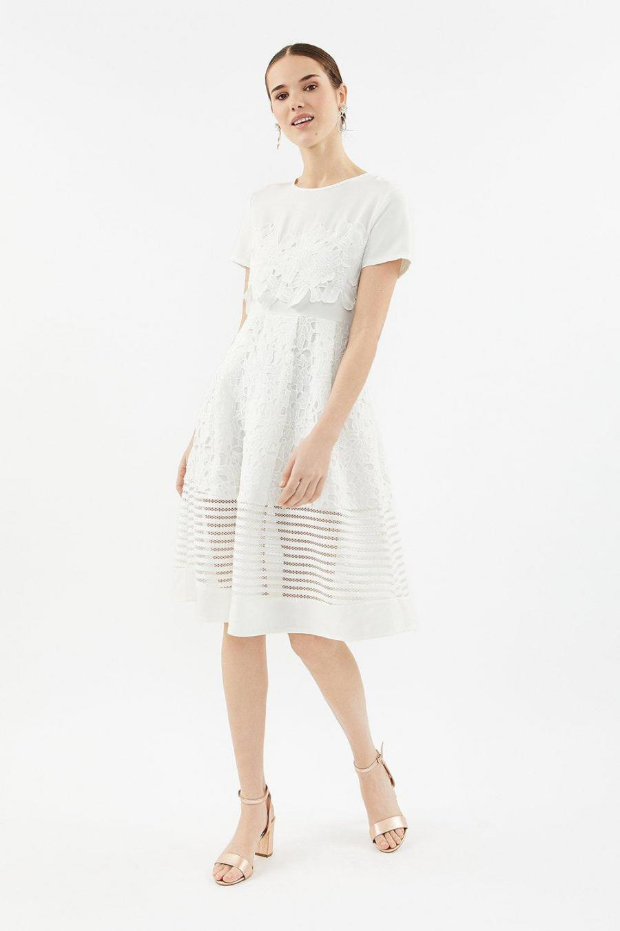 Coast Skater Dresses | Womens Lace & Stripe Full Midi Dress Ivory